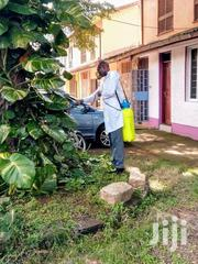 Solution To All Pests Problems Eg Bedbugs/Pest Control Services | Cleaning Services for sale in Nairobi, Komarock