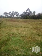 1/2 Acre | Land & Plots For Sale for sale in Nyandarua, Githabai
