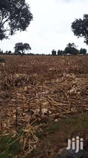Quarter Plot On Sale On The Outskirts Of Naiberi | Land & Plots For Sale for sale in Uasin Gishu, Kaptagat