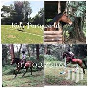 Camel Ride Horse Riding And More For Hire | Party, Catering & Event Services for sale in Nairobi, Parklands/Highridge
