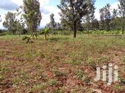 2 Acres Of Land For Sale At Makuyu Pundamilia In Muranga County. | Land & Plots For Sale for sale in Murang'a, Makuyu