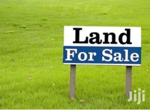 Kenya Safehomes 100 Acres For Sale In Naromoru Nyeri