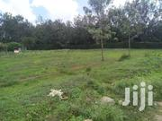 Prime 1/2 Acre Of A Vacant Land In Kasarani   Land & Plots For Sale for sale in Nairobi, Kasarani