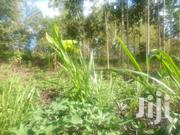 1/2 Acre Land For Sale At Makuyu Tatu City In Muranga County | Land & Plots For Sale for sale in Murang'a, Makuyu