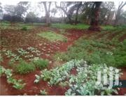 Half Of An Acre Plot In Runda   Land & Plots For Sale for sale in Nairobi, Nairobi West