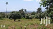 Kwale Freehold Plot 0.75 Acre | Land & Plots For Sale for sale in Kwale, Gombato Bongwe