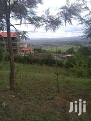 Nakuru,Kiamunyi Olive 1/4 Acre. 50 Mtrs From Tarmac | Land & Plots For Sale for sale in Nakuru, London