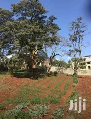 Selling 1/2 Acre In Runda Kigwaru. | Land & Plots For Sale for sale in Kiambu, Ndenderu