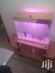 Hand Made Aquarium | Pet's Accessories for sale in Kajiado, Ngong