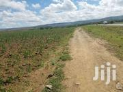 1 Acre Roadfront Land For Sale In Narok Duka Moja With Title | Land & Plots For Sale for sale in Narok, Keekonyokie (Narok)