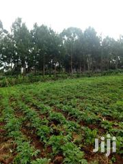 Prime Land For Agricultute | Other Services for sale in Busia, Bunyala West (Budalangi)