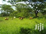 4acres Of Ariable Land With 2timbers Of 3 And 2rooms | Land & Plots For Sale for sale in Meru, Kibirichia