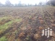 One Acre Piece Of Land At Ngata 1/2 A Km From The Highway | Land & Plots For Sale for sale in Nakuru, Mosop