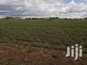 100 Acres For Sale | Land & Plots For Sale for sale in Uasin Gishu, Kuinet/Kapsuswa