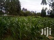 1/4 Ac | Land & Plots For Sale for sale in Migori, Suna Central