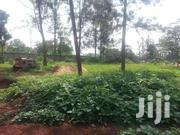 Outstanding  1/2 Acre Land At Garden Estate,In A Well Developed,Deed P   Land & Plots For Sale for sale in Nairobi, Roysambu