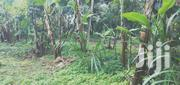 Quarter In Gakwegori | Land & Plots For Sale for sale in Embu, Mbeti North