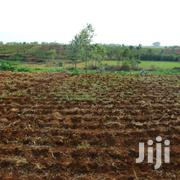 Airwae  Plots At An Affordable Price | Land & Plots For Sale for sale in Kisii, Masimba