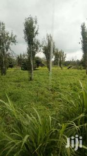 60 Acres For Sale In Kinangop Murungaru. | Land & Plots For Sale for sale in Nyandarua, Murungaru