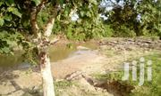 LAND 22 ACRES COAST | Land & Plots For Sale for sale in Kwale, Kinango