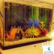 Home Aquariums | Pet's Accessories for sale in Nairobi, Nairobi Central