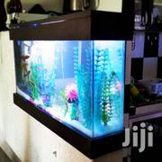 Dinning Partition Aquarium | Pet's Accessories for sale in Nairobi, Nairobi Central